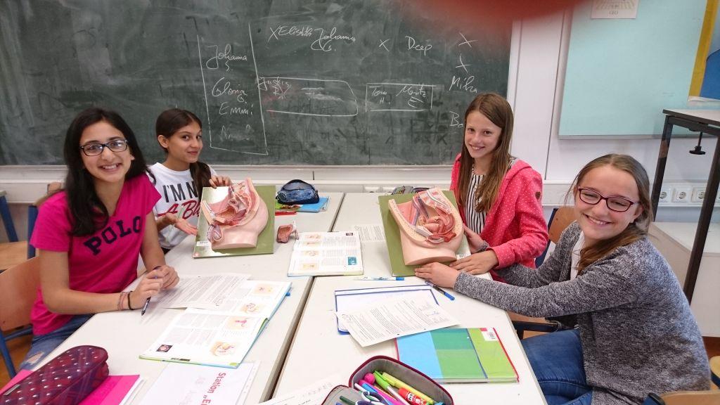 Schüler*innen der 6a an verschiedenen Stationen zum Kondom und zu den Geschlechtsorganen